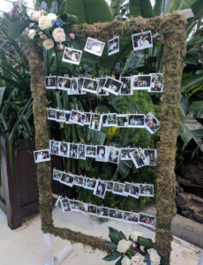 Wedding Flowers - Photo frame polaroid stand to hire in Chester. Created by our florists.
